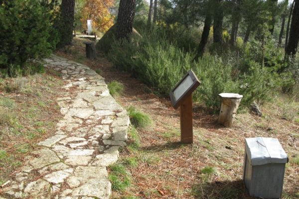 Arboreto Luis Ceballos - rincón de melíferas