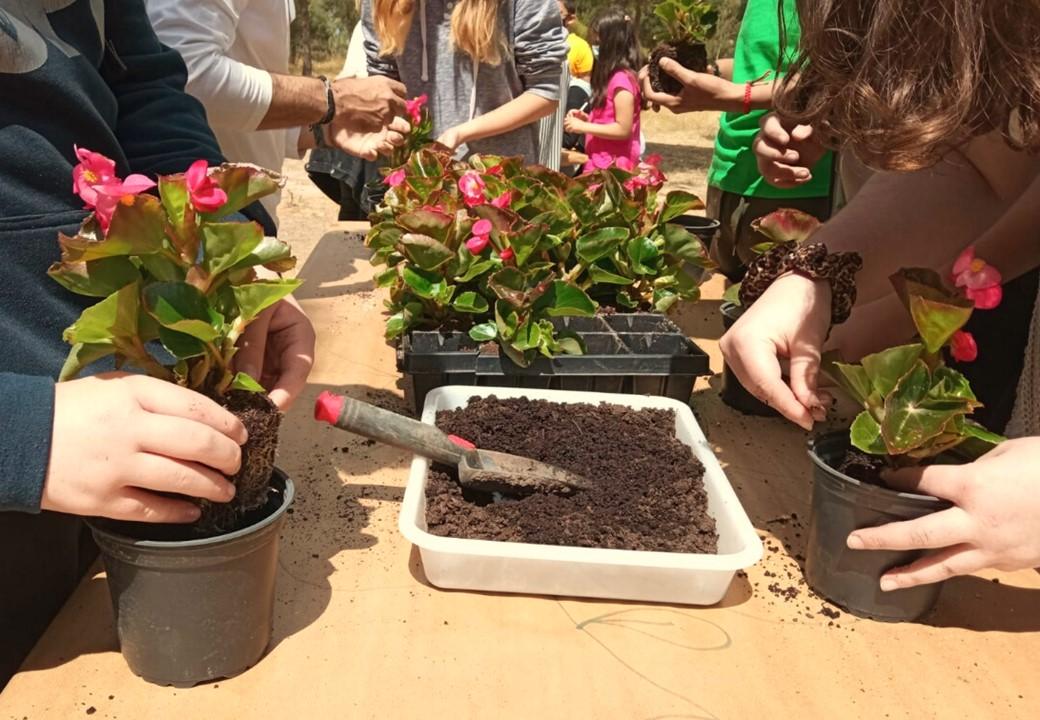 Promoviendo la inclusión de los jóvenes a través de la jardinería.